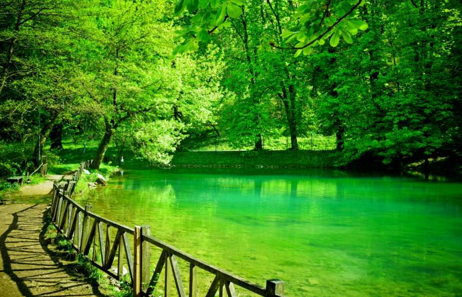 vrelo-bosne-3_877.jpg