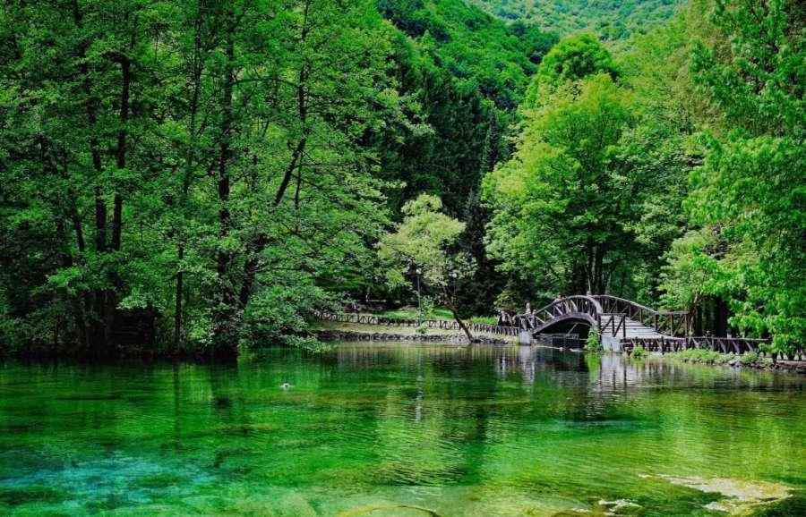 vrelo-bosne_6165.jpg